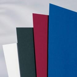 Acco krāsaini kartona vāki