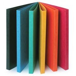Krāsaina kartona mape ar piespiedēju, Multi-S